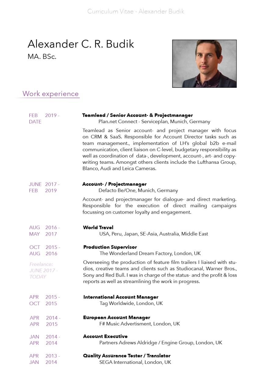Alexander_Budik_CV_ENG_2021_page3